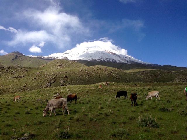 climb Ararat Classic